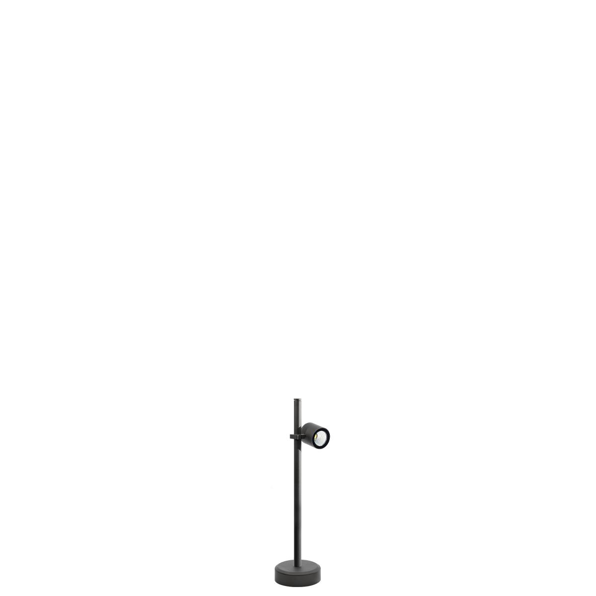 MaxiSegno P 1L 500